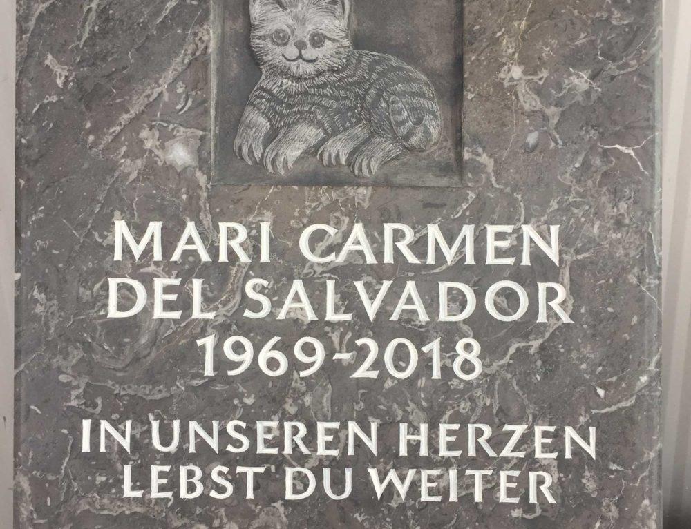 Katze in Kalkstein